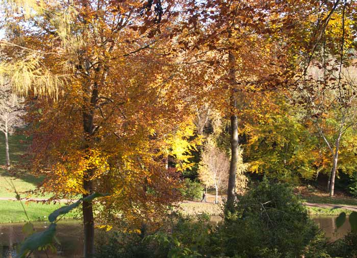 Autumn colours at Hestercombe Gardens